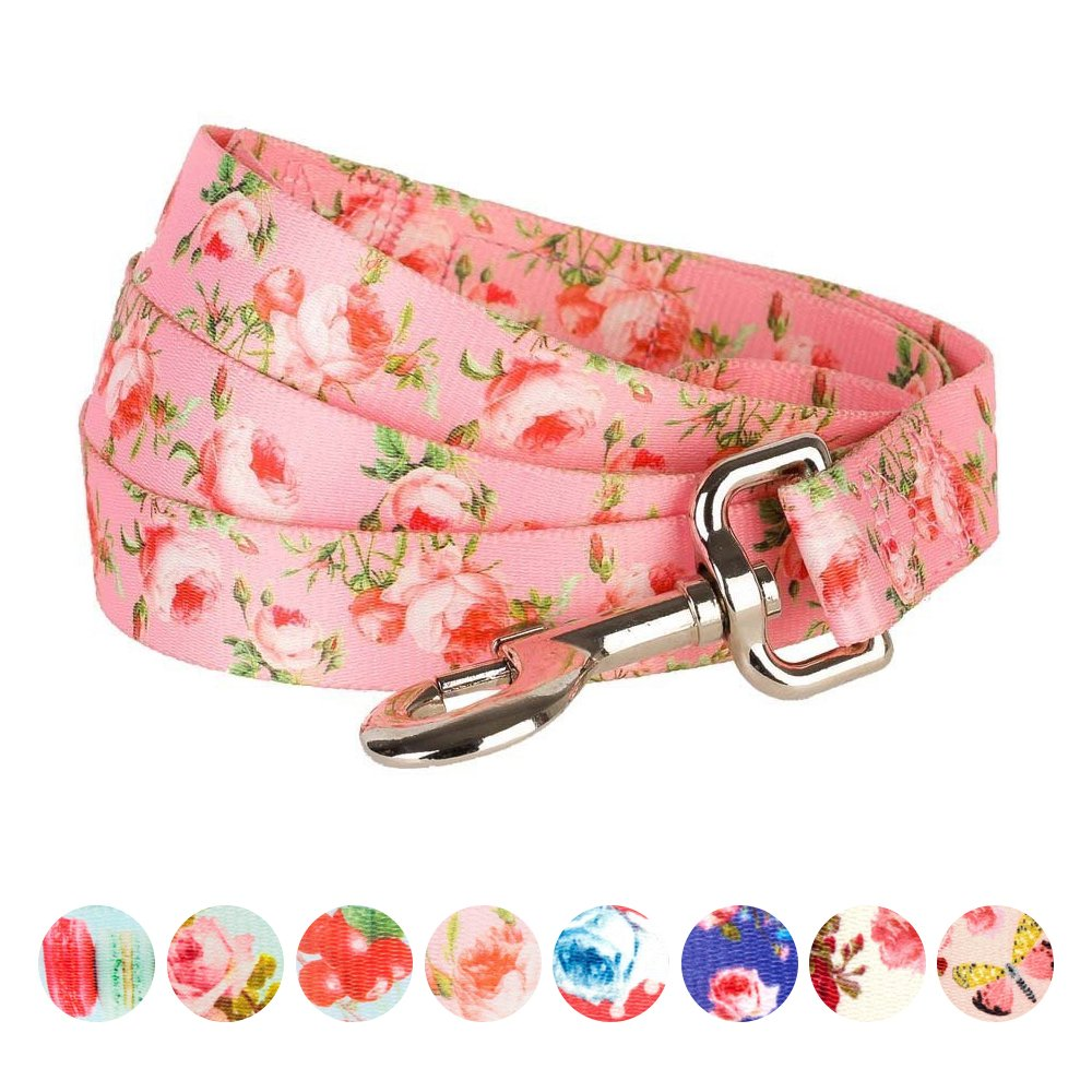 Blueberry Pet Durable Spring Scent Inspired Floral Rose Baby Pink Dog Leash 5 ft x 5/8'', Small, Leashes for Dogs