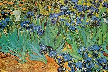 Vincent Van Gogh Garden Of Irises Art Print Poster   24x36 Poster Print By  Vincent Van