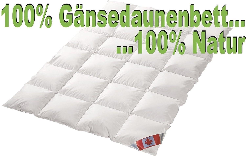 Ganzjahres Kassettenstegbett Polaris Premium canadische Daunen Daunenbett 100% Natur Gänsedaunenbett (240x220)