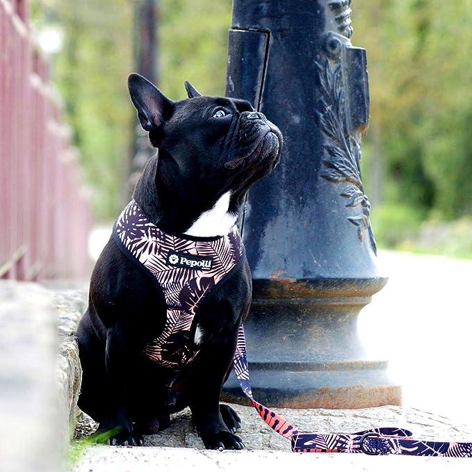 f/ür Bulldoggen bequem Mops verstellbar Wendbar Bulltastic Fall Habitat Hundegeschirr und Andere Hunderassen leicht zu Reinigen