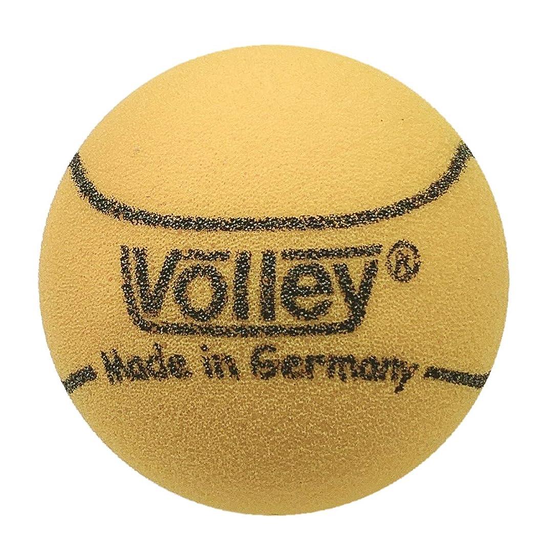 先のことを考える統治するアーティキュレーションDUNLOP(ダンロップ) プレッシャーライズド FORT(フォート)(2個入)[30缶]テニスボール