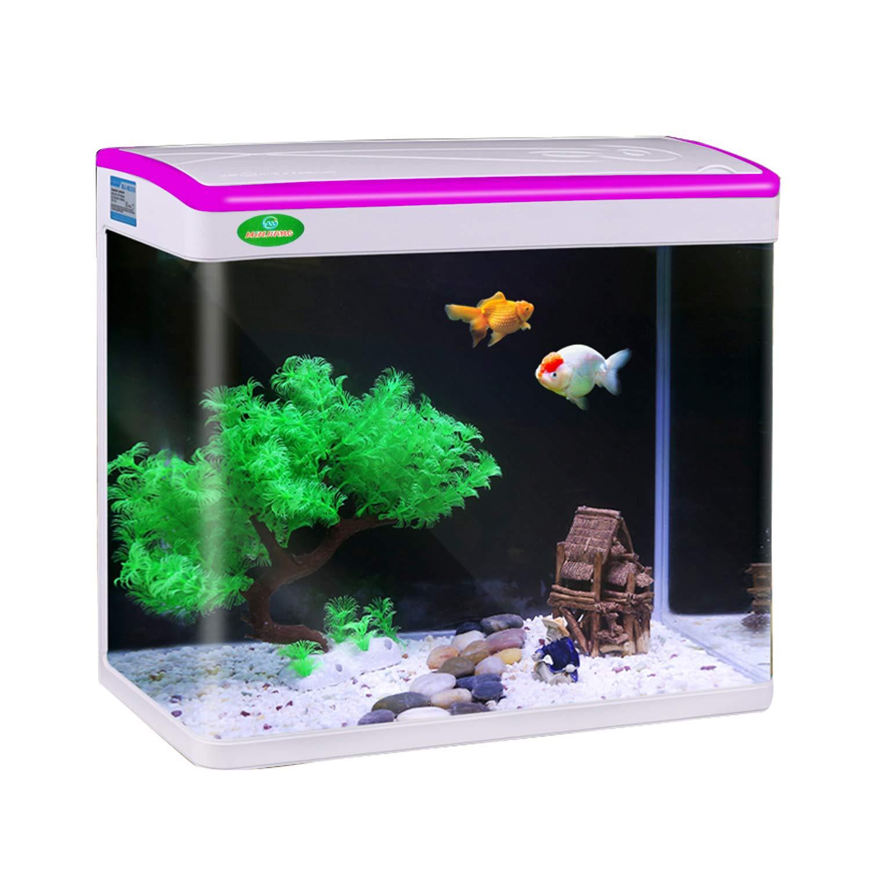 Jainsons Pet Products Fish Tank Mini Aquarium Combo Colour May Vary 9 L Buy Online In Cook Islands At Desertcart