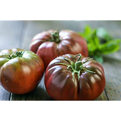 """Black Brandywine"" Tomato Seeds, 100+ Premium Heirloom Seeds, Exotic! Rich Delicious Flavor!, (Isla's Garden Seeds), Non GMO Organic, 85-90% Germination Rates, Highest Quality Seeds : Garden & Outdoor"