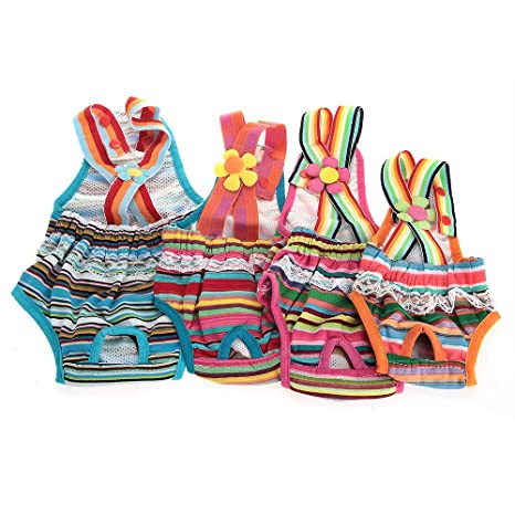 nuovo di zecca scarpe da skate codici promozionali Crazo Mutandina Igienica con Bretelle per Cane Tg.8 Tessuto ...