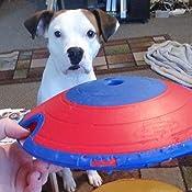 Pet Supplies : Nina Ottoson Treat Maze Interactive Game