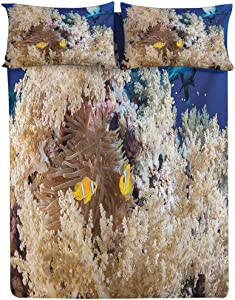 Fitted Sheet Queen Size,Reef with Little Clown Fish and Sharks East Egyptian Red Sea Life Scenery Food Chain Fitted Sheet Set 3 Piece,1 Fitted Sheet & 2 Pillow Cases,15