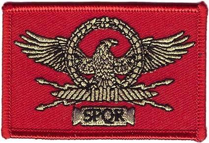 Titan One Europe - SPRQ República Romana Águila Bandera Legión César Parche Bordado Termoadhesivo: Amazon.es: Coche y moto