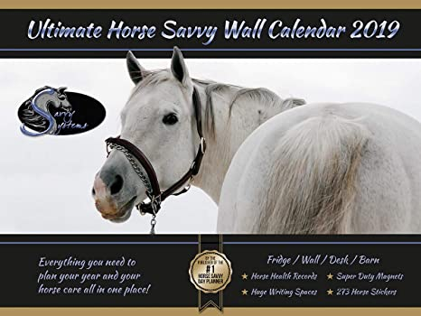 Horse Savvy ~ Horse Calendar 2019 ~ Delux Large Size 18