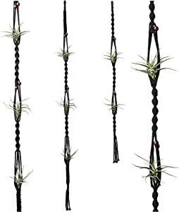 POTEY 604202 Air Plants Holders - Air Plant Wall Hanger for Tillandsia Home Decor Hanging Air Plant Holder Handmade Cotton Rope 2 Pack Air Plant Hanger 43.3''/33.4'',Black
