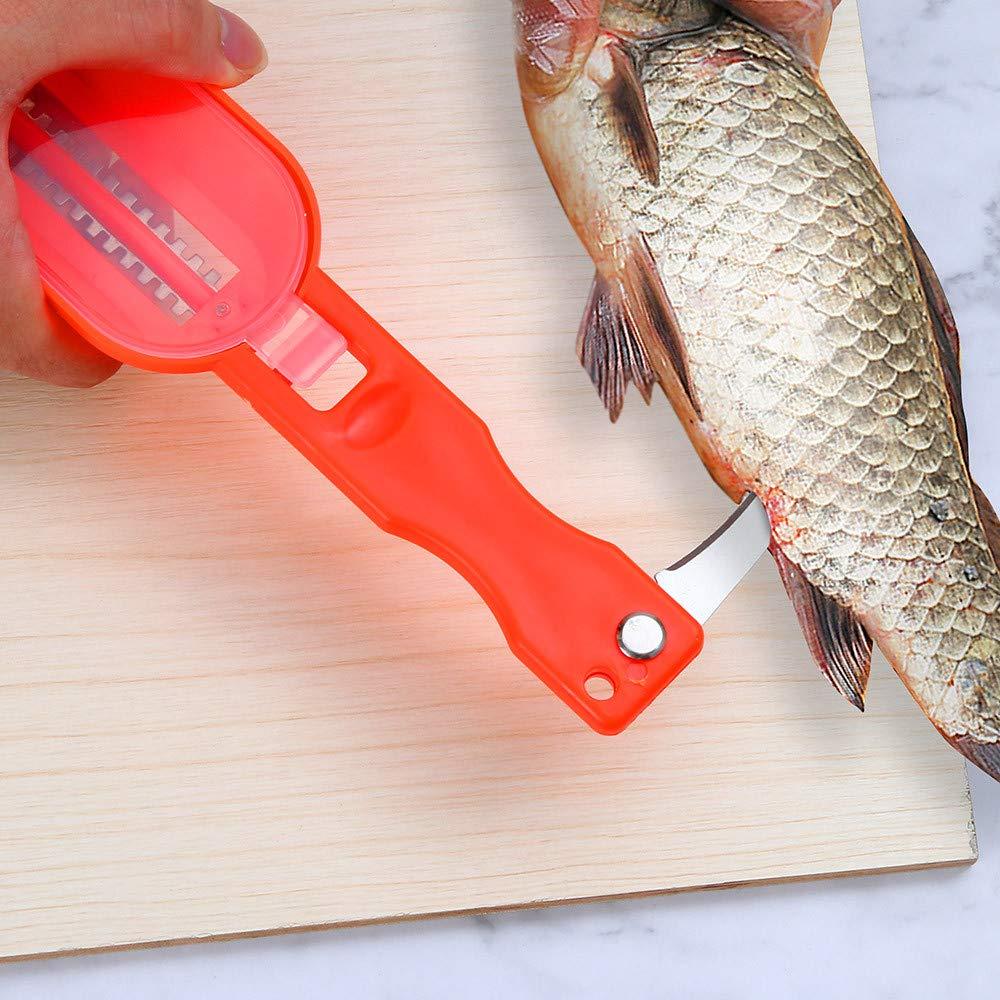 Compra Scaler Scraper taottao Nueva práctica escamas Remover Scaler Rasqueta limpiador Herramienta de Cocina pelador, rojo, 20x5.5cm en Amazon.es