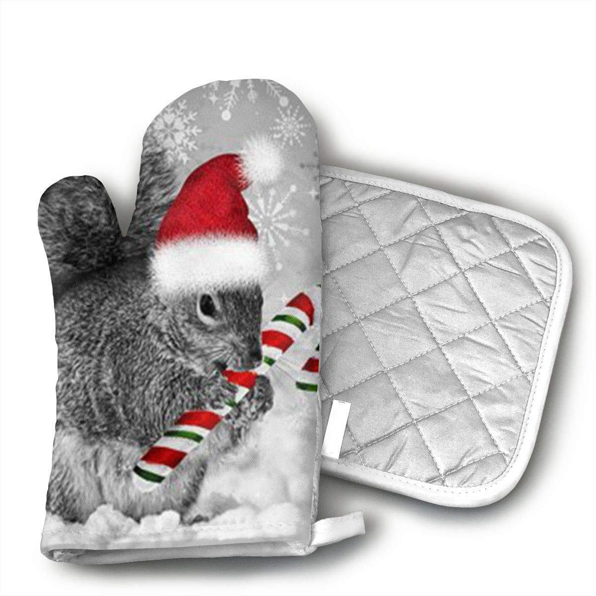 Christmas Squirrel,Candy Cane,Oven Mitts Kitchen Gloves and Pot Holders 2pcs for Kitchen Set with Cotton Neoprene Silicone Non-Slip Grip,Heat Resistant,Oven Gloves for BBQ Cooking Baking Grilling