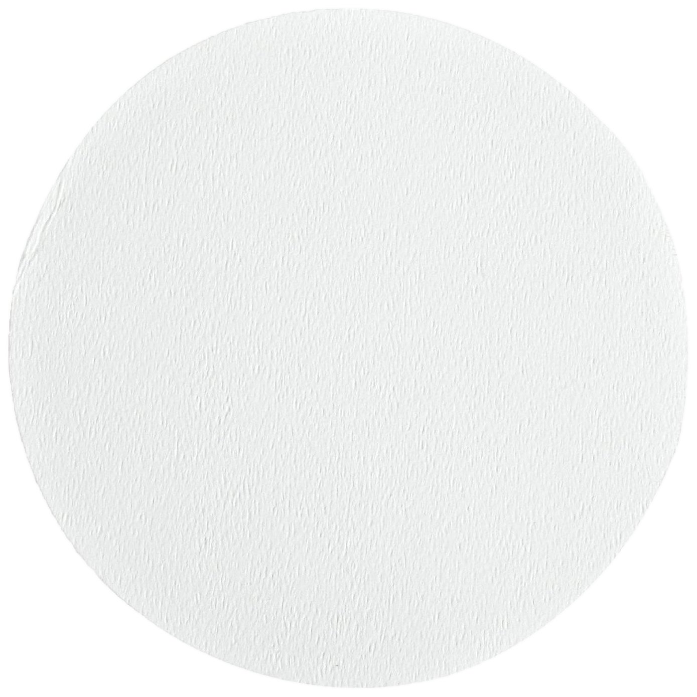 Ahlstrom 1510-0425 Borosilicate Glass Microfiber Filter Paper, 0.7 Micron, Slow Flow, Grade 151, 4.25cm Diameter (Box of 100) by Ahlstrom