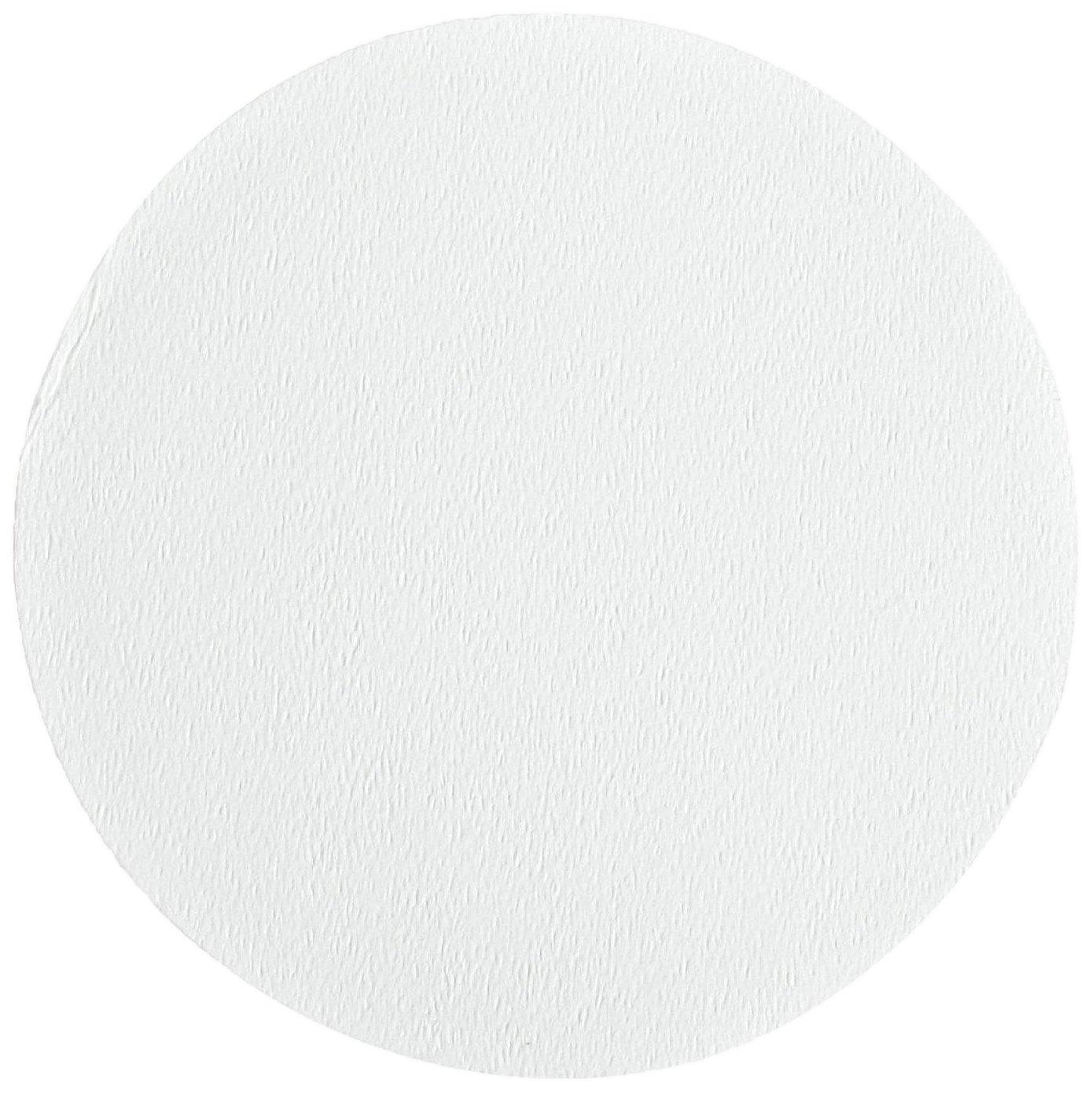 Ahlstrom 1510-0425 Borosilicate Glass Microfiber Filter Paper, 0.7 Micron, Slow Flow, Grade 151, 4.25cm Diameter (Box of 100)