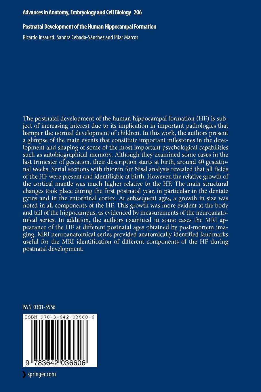 Buy Postnatal Development of the Human Hippocampal Formation ...