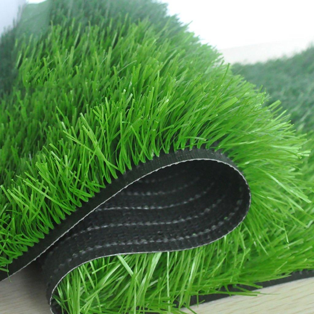 WENZHE 人工芝芝生 ガーデンターフ 人工芝サッカー場高密度安価、2メートルワイド、厚い40 / 50mm、4つのスタイル ( 色 : C-50mm , サイズ さいず : 2*0.5m ) B07917SRBP 2*0.5m|C-50mm