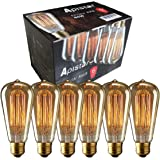 NEW Edison Vintage Bulbs - 6 pack - Aplstar Bulbs - 60W Incandescent - Clear Glass - ST64 Squirrel Cage - Dimmable