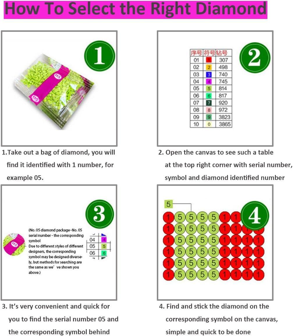 blume 5D Diamant Gem/älde Mosaik Kreuzstich Kits DIY handgefertigt Full Drill Kunstharz Diamant Stickerei Perfekte Geschenke f/ür Home Dekoration 25x30cm