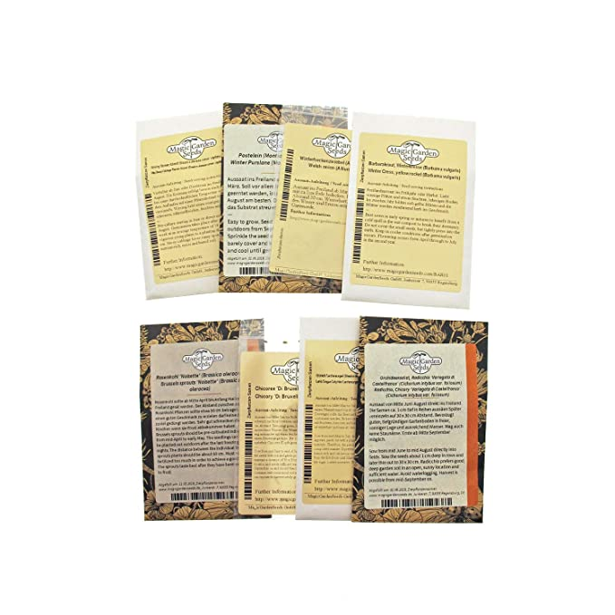 Magic Garden Seeds Kit de Semillas Regalo: Hortalizas de Invierno ...