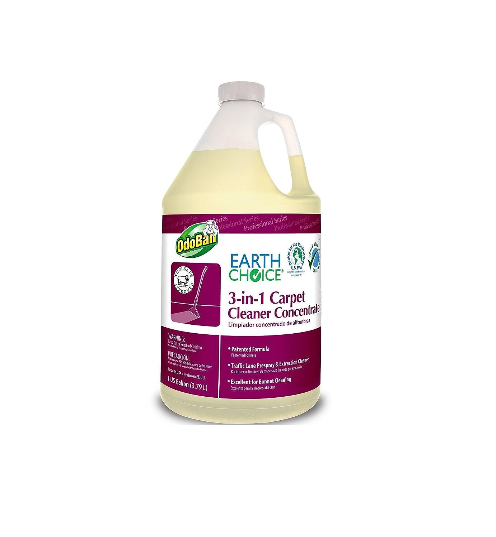 Earth Choice 3 - in - 1カーペットクリーナー濃縮( 2パック) B00MU24JJE