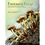 Fantastic Fungi: Expanding Consciousness, Alternative Healing, Environmental Impact // Official Book of Smash Hit Documentary