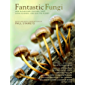 Fantastic Fungi: How Mushrooms Can Heal, Shift Consciousness, and Save the Planet (English Edition)