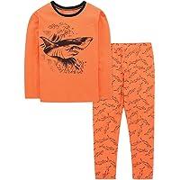 DAUGHTER QUEEN Pijamas Niños, Pijamas de Manga Larga para Niños de 1 a 7 Años, Pijama Niño Invierno de 100% Algodon…