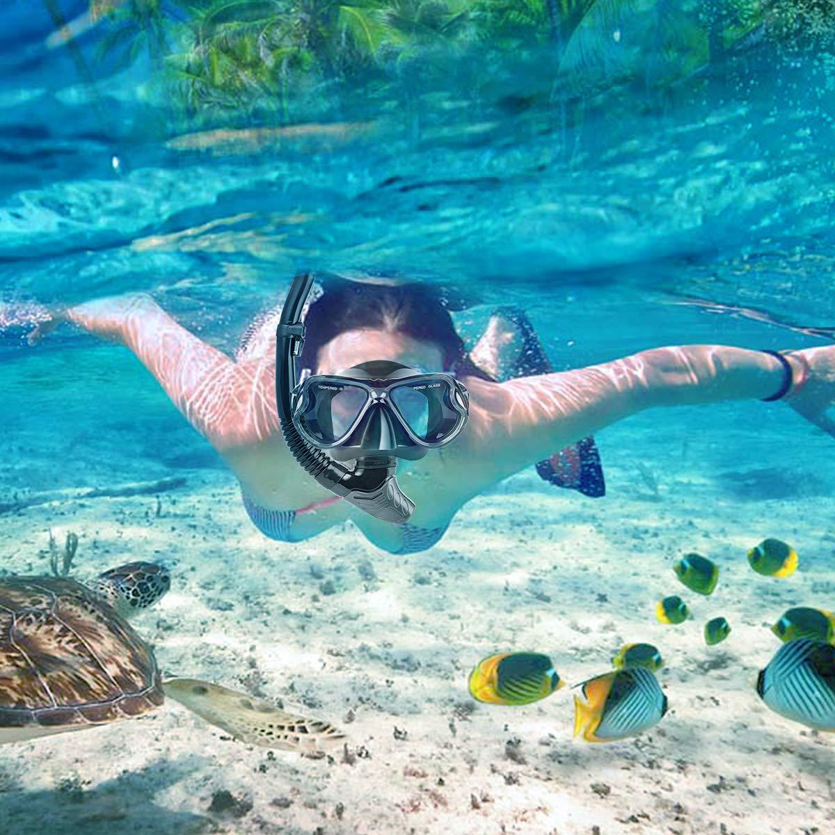 Charlemain Set Snorkeling, Anti-Fog Maschera Snorkeling con Panoramica a 180 Gradi e Boccaglio Snorkel, Kit Snorkeling Professionale per Adulti