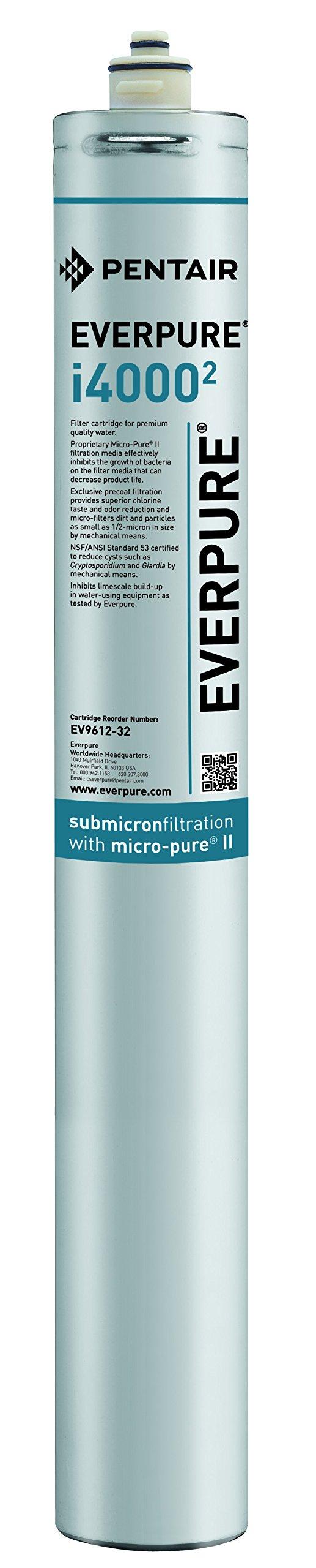 Everpure EV9612-32 i4000 2 Filter Cartridge
