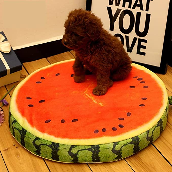 Daeou Cama para Mascotas Frutas sandía cojín Kennel diámetro 33cm Grosor 4,5 cm: Amazon.es: Hogar