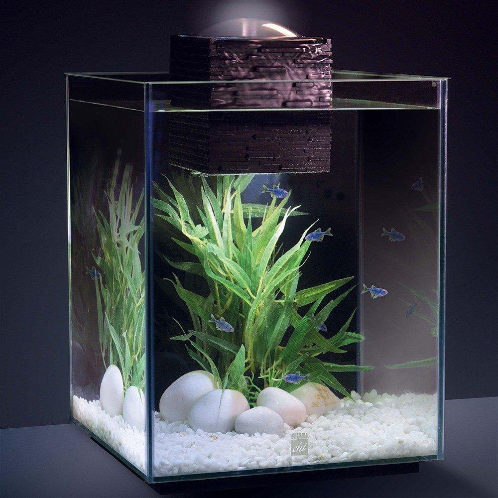 Fish tank near tv - Fish Tank Near Tv