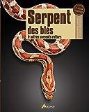 Serpent de blés et autres serpents ratiers