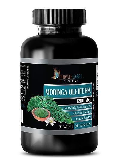 Amazon.com: Moringa OLEIFERA Extracto 4:1 1200MG - Moringa ...