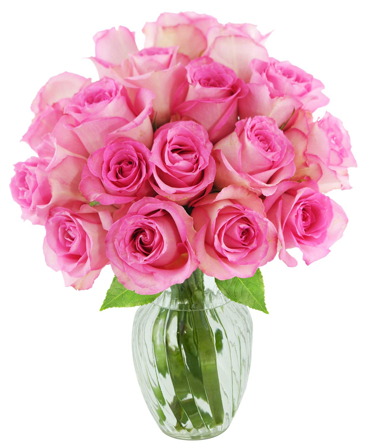 KaBloom Bouquet of 18 Fresh Pink Roses (Farm-Fresh, Long-Stem) with Vase by KaBloom
