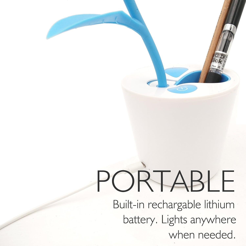 Wonderful ZHOPPY LED Desk Lamp For Kids, 3 Level Dimmer Touch Sensitive Control,  Flexible Gooseneck, Portable Rechargeable Book Light, Bird Pencil Holder,  ...
