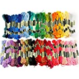 PES 100 Skeins of 8M Multi-color Rainbow Full Colours Cross Stitch Skeins Supplies Soft Cotton Embroidery Threads Sewing Floss Threads for Counted Cross Stitch Fabric