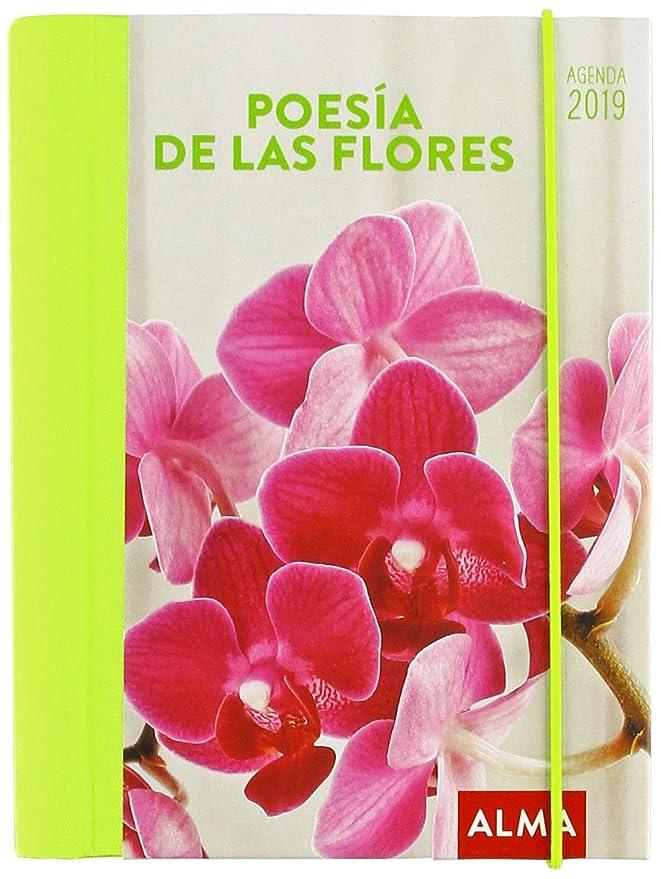 Agenda 2019. Poesía de las flores: Vv.Aa: Amazon.es: Oficina ...