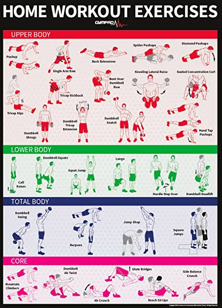 GymPad Dumbbell And Bodyweight Home Workout Exercise Poster