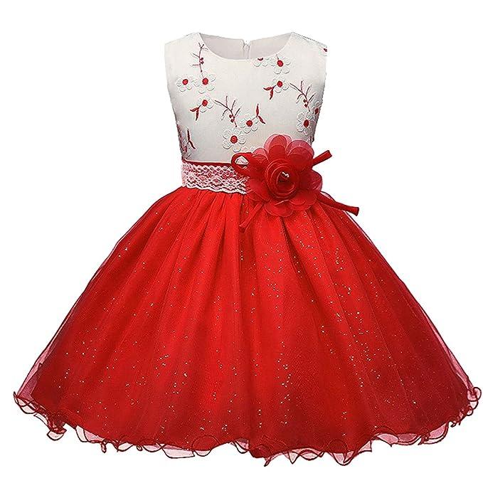 Niña Vestidos de Ceremonia Ceremonia Princesa Tul Vestidos de Flores sin Mangas para Bebé para Boda Bautizo Fiesta: Amazon.es: Ropa y accesorios