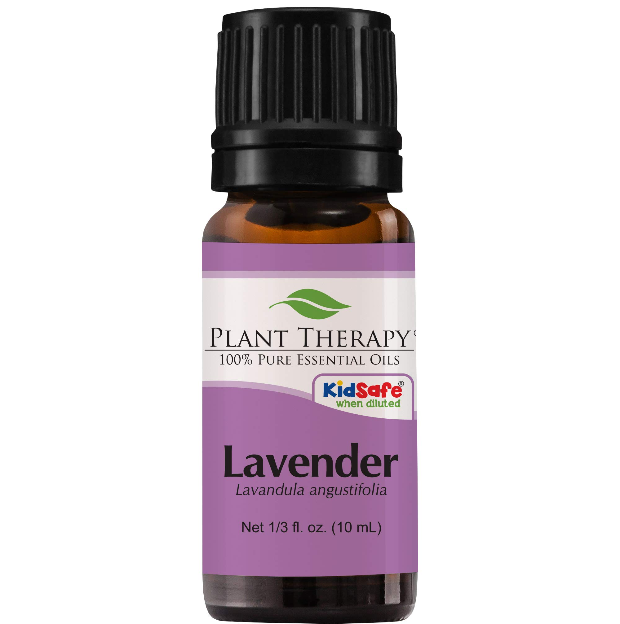 e061ea153716c7 Plant Therapy Lavender Essential Oil | 100% Pure, Undiluted, Natural  Aromatherapy, Therapeutic