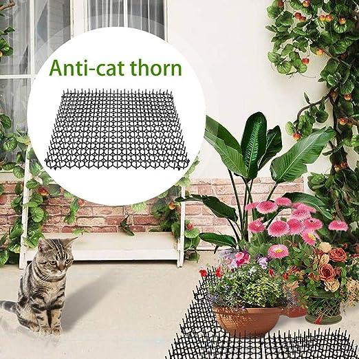 bloomma - Esteras para Gatos de 5 Piezas, para Gatos de jardín ...
