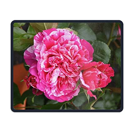 03b77278 Amazon.com : Buy at AGEL Rosen Mouse Pads with Design, with Stitched ...