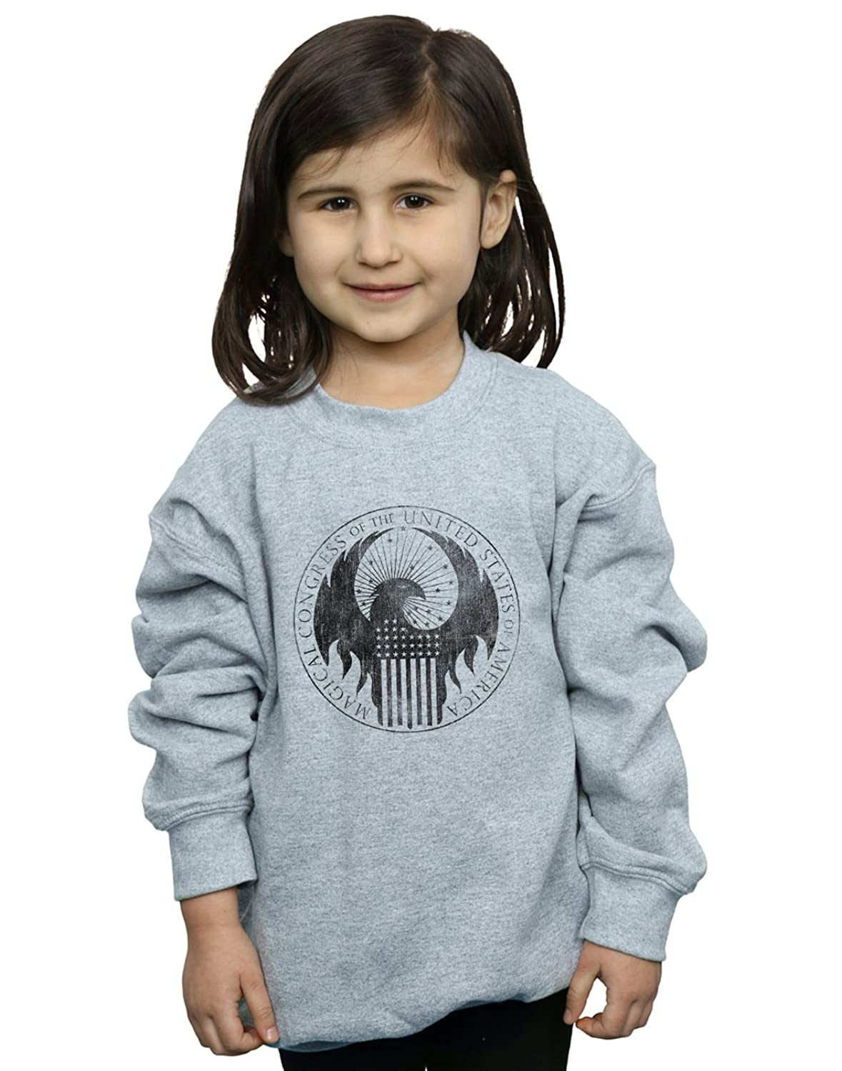 Absolute Cult Fantastic Beasts Fille Distressed Magical Congress Sweat-Shirt