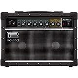 Roland JC-22 Jazz Chorus 40-Watt Guitar Amplifier with Two 6.5-Inch Speakers