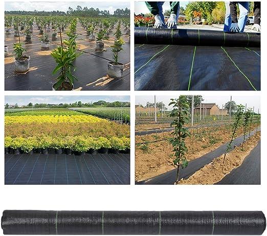 Blackpoolal - Cubierta de Tela para Control de Malas Hierbas, para jardín, Paisaje, Campo, Malas Hierbas, no Tejida, Resistente, Color Negro: Amazon.es: Jardín