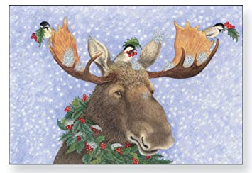 Amazon.com : Holly Moose Christmas Cards : Greeting Cards : Office ...