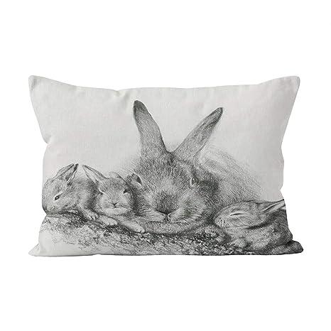 Suklly - Funda de cojín con diseño de Conejo francés en el ...