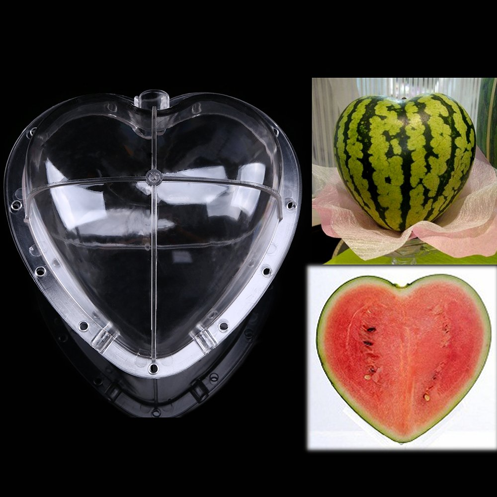 WCIC 2-Pack Big Heart Growing Heart Shaped Sapodilla Watermelon Mold Garden Shaped Fruit Mould Tool with 11 Screws