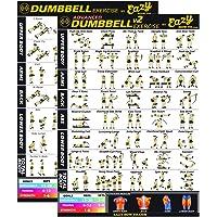 Dumbbell Oefening Banner Poster BIG 51 x 73cm Train Endurance, Tone, Build Kracht & Spier Thuis Gym Grafiek