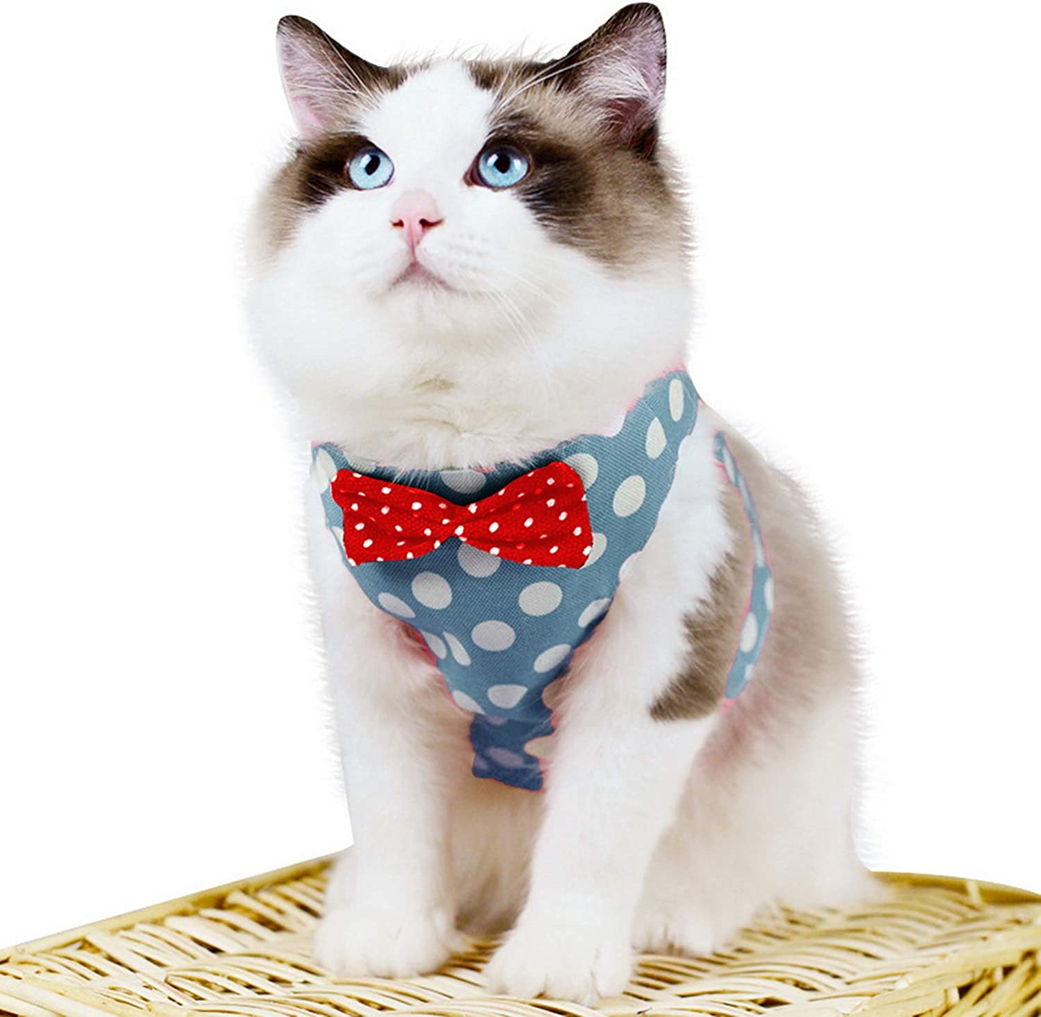 Mesh Padded Pet Cat Harness Escape Proof for Walking Red XS Zunea No Pull Dog Harness and Leash Set for Small Dogs Adjustable Striped Formal Tuxedo Vest Harnesses with Bow Tie for Puppy Girl Boy