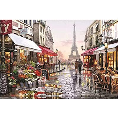 Puzzles for Adults Kids Teens 1000 Pieces Street View of Paris Tower Jigsaw Puzzles Rectangle Printed DIY Learning Education Birthday Present: Arts, Crafts & Sewing